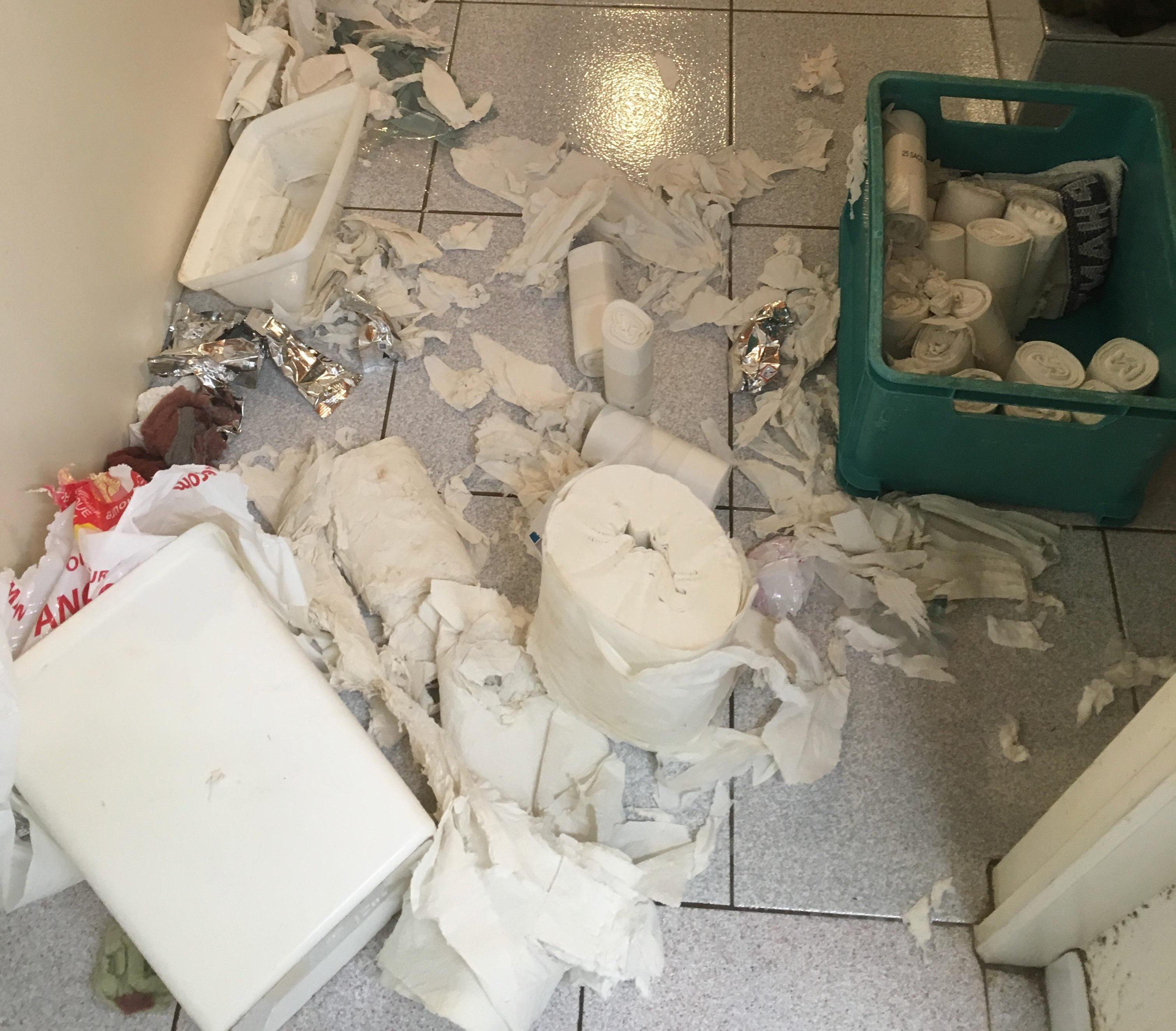 Poubelle éventrée et papiers qui jonchent le sol