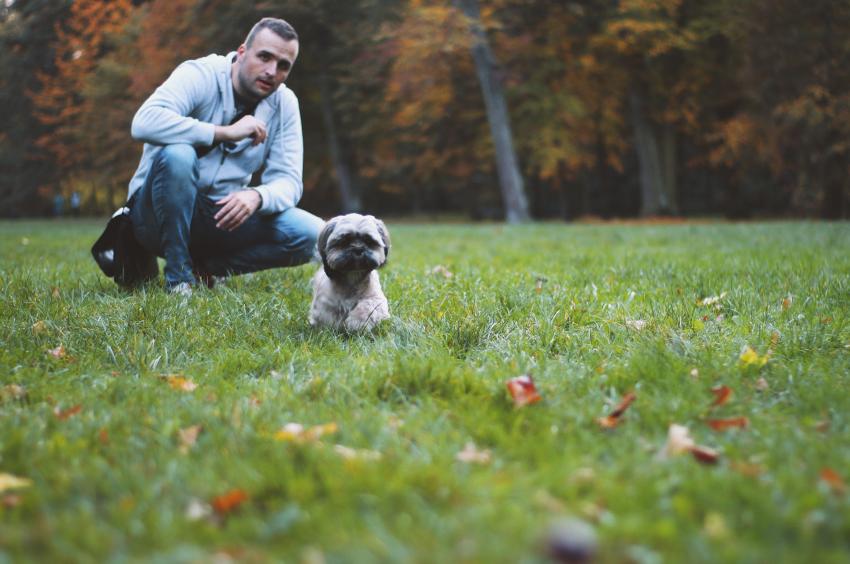 Maître éduquant son chiot dans un parc