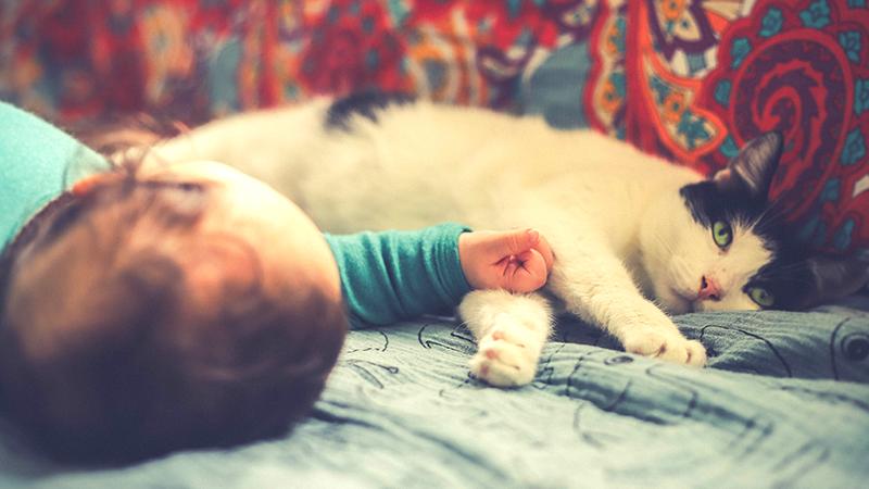 Nourrisson dormant à côté d'un chat noir et blanc